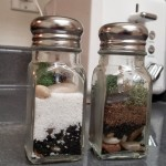 A twist on the traditional Salt and Pepper