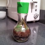 A verdant soy sauce container
